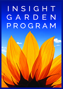 Insight Garden Program 2